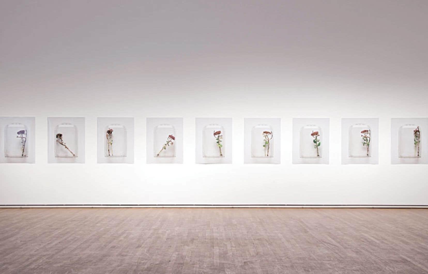 Chih-Chien Wang a toujours été soucieux de l'accrochage de ses œuvres.