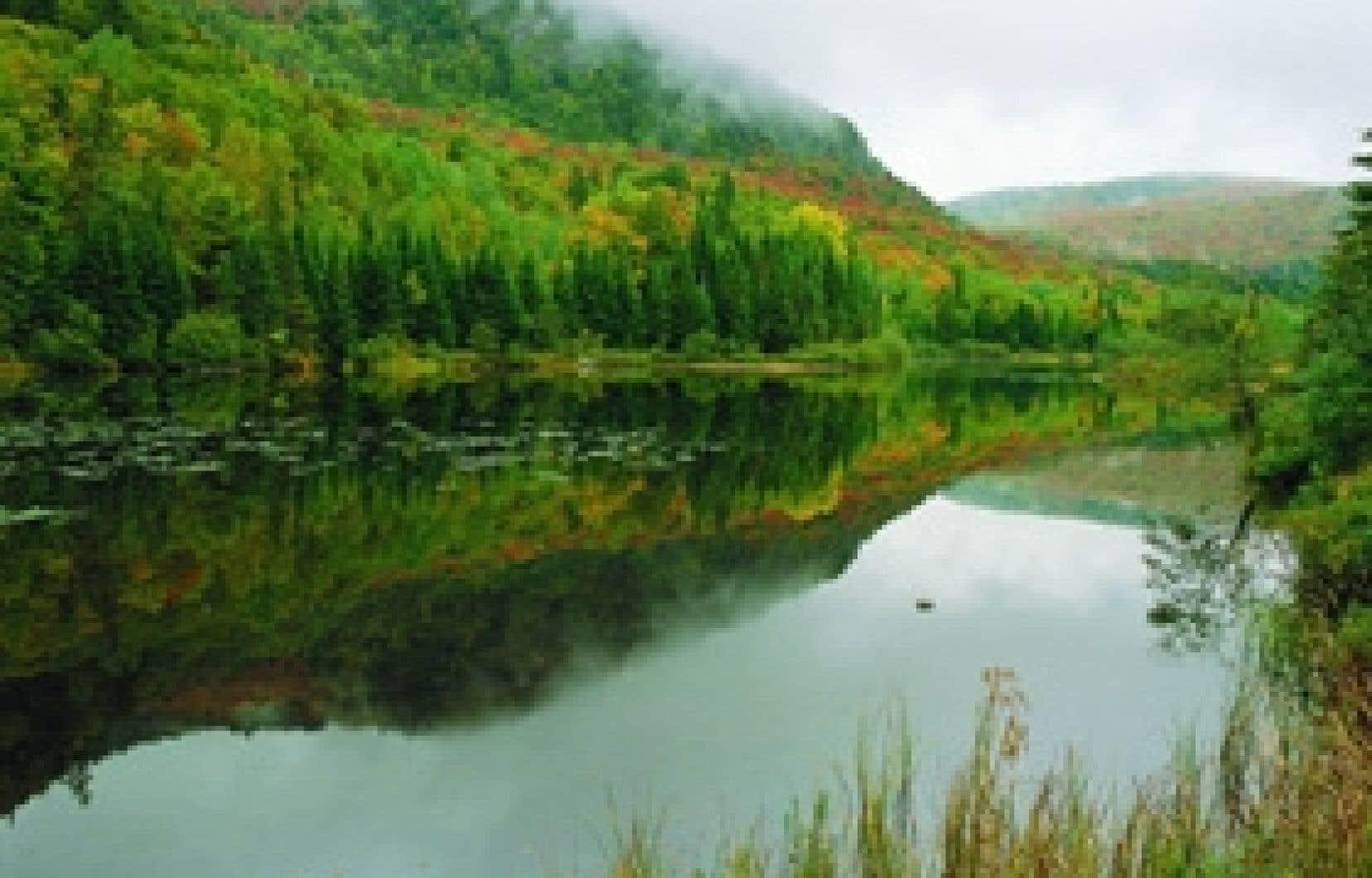 envirofoto sepaq Scène d'automne au parc national du Mont-Tremblant.