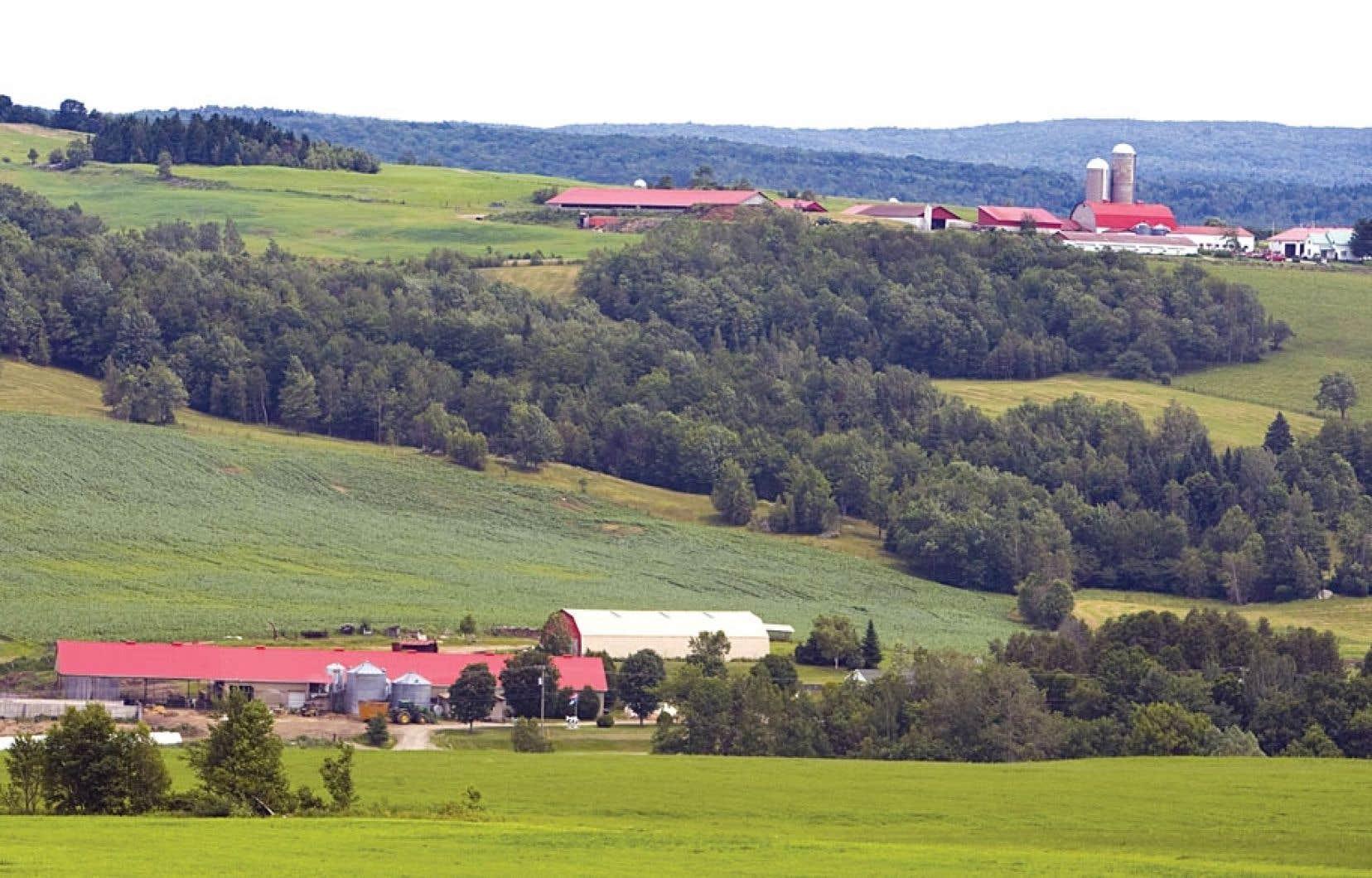 L'Union des producteurs agricolesinsiste sur la nécessité du gouvernement de « bouger dans le dossier » de l'accaparement des terres par les spéculateurs.