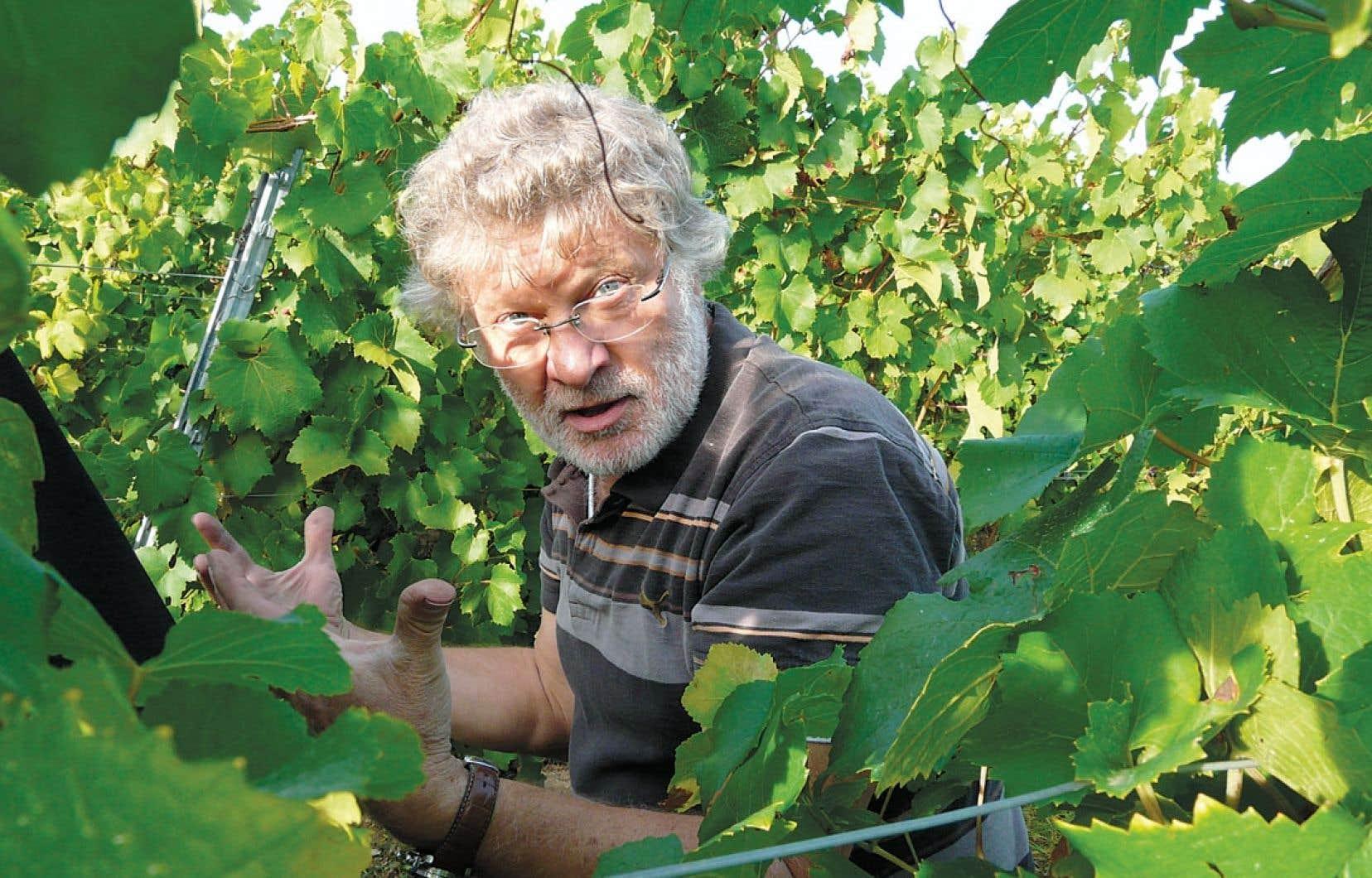 Jean-Michel Deiss, au cœur de son vignoble.