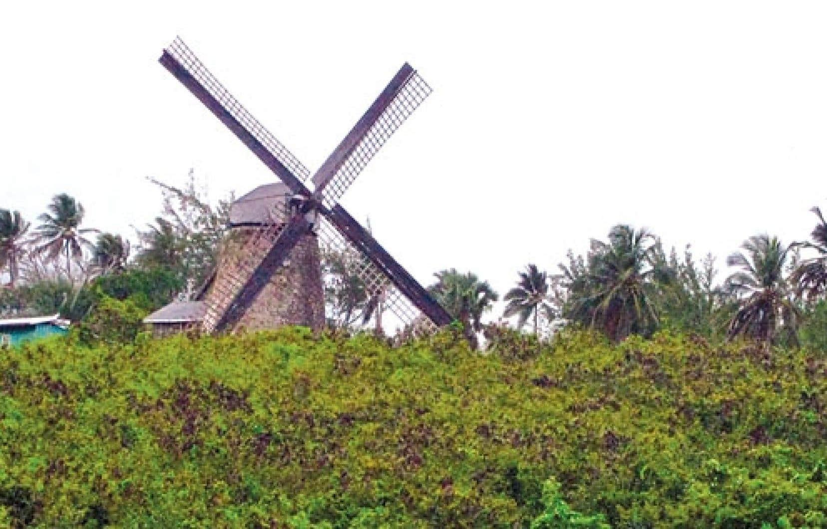 Le Morgan Lewis Mill, l'un des plus grands moulins encore intacts de la région.