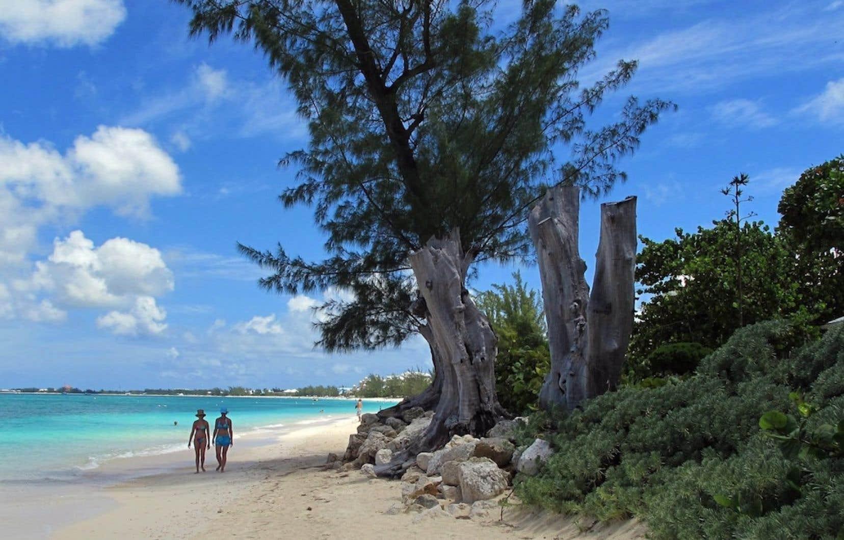 L'ICIJ a mis la main sur un disque dur qui «fourmille de renseignements précis, souvent codés, sur l'identité des administrateurs et les actionnaires de ces sociétés établies dans les îles Vierges britanniques, aux Caïmans, aux îles Cook, aux Samoa, à Singapour», écrit une journaliste du journal Le Monde.