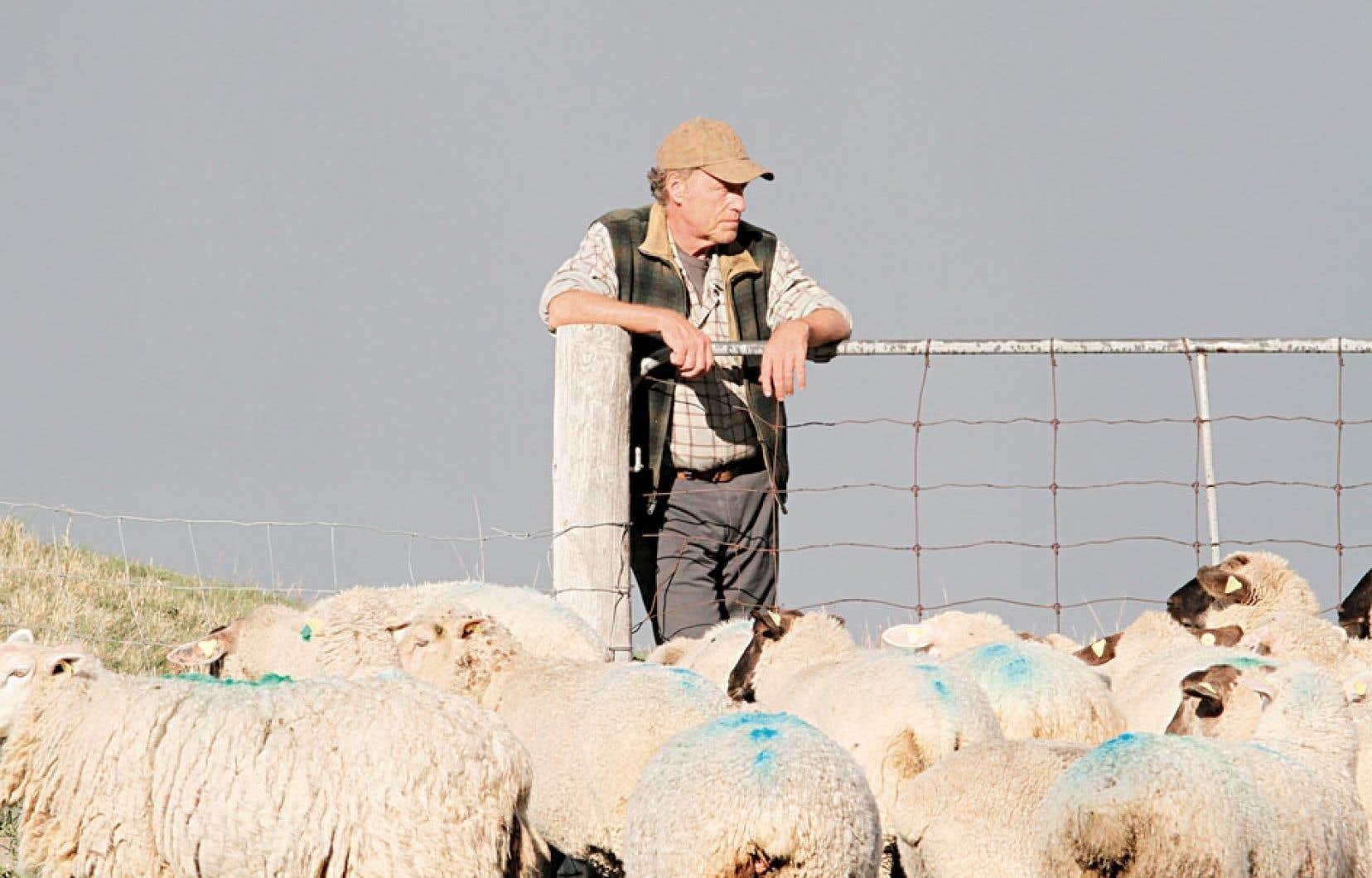 Le démantèlement donne la vedette à Gabriel Arcand, en fier propriétaire d'une ferme d'agneaux qui, pour aider sa fille dépensière et endettée, se départ de ses biens et part vivre en ville.