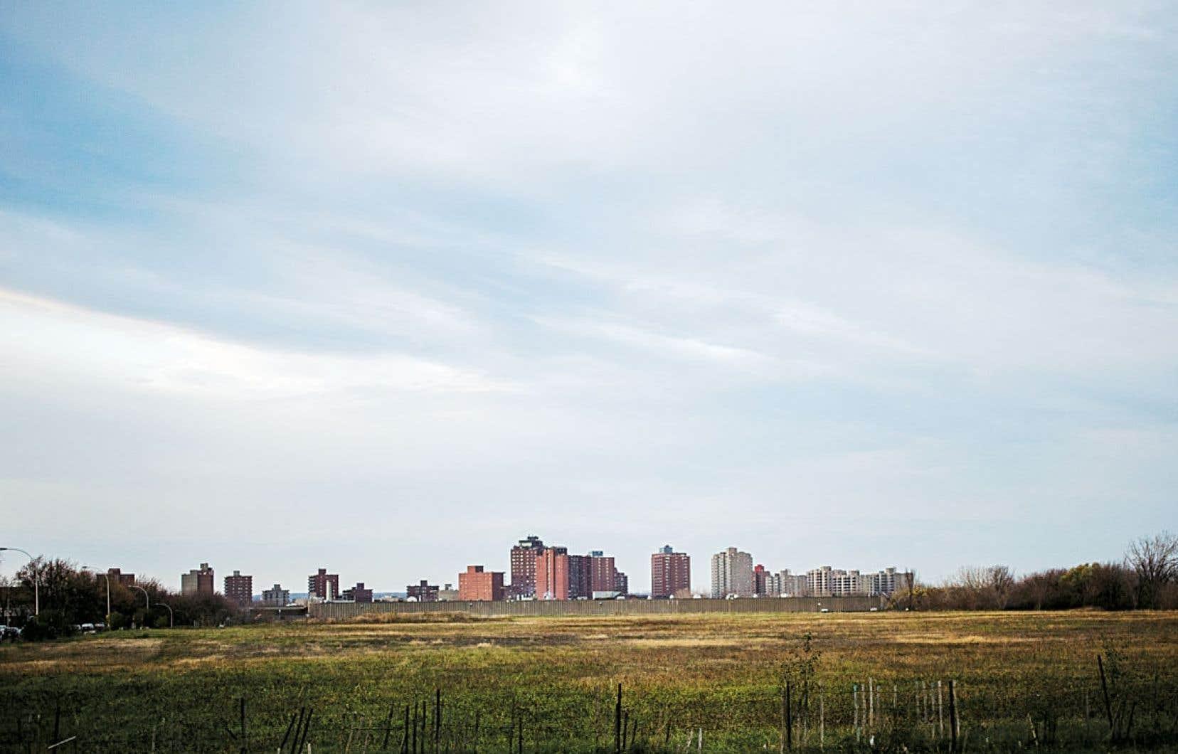 Le secteur Albert-Hudon, à la limite est de l'arrondissement, est le dernier à n'avoir pas été construit. L'administration actuelle nourrit de grandes ambitions pour ce terrain de quelque 60 acres, qui pourrait éventuellement désenclaver le secteur nord-est. Au fond, Laval.
