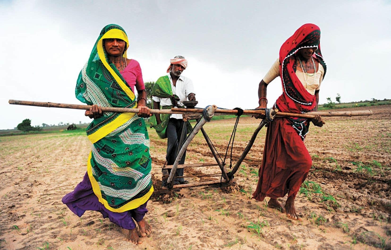 Deux femmes sont attelées comme des bêtes de somme pour aider à labourer un champ pour les graines de coton dans le village de Nani Kisol dans l'État du Maharashtra, en Inde. Selon le livre d'Andrée-Marie Dussault, les femmes en Inde n'auront jamais fini de se battre. Surtout quand elles proviennent des communautés tribales, elles héritent des tâches les plus viles.