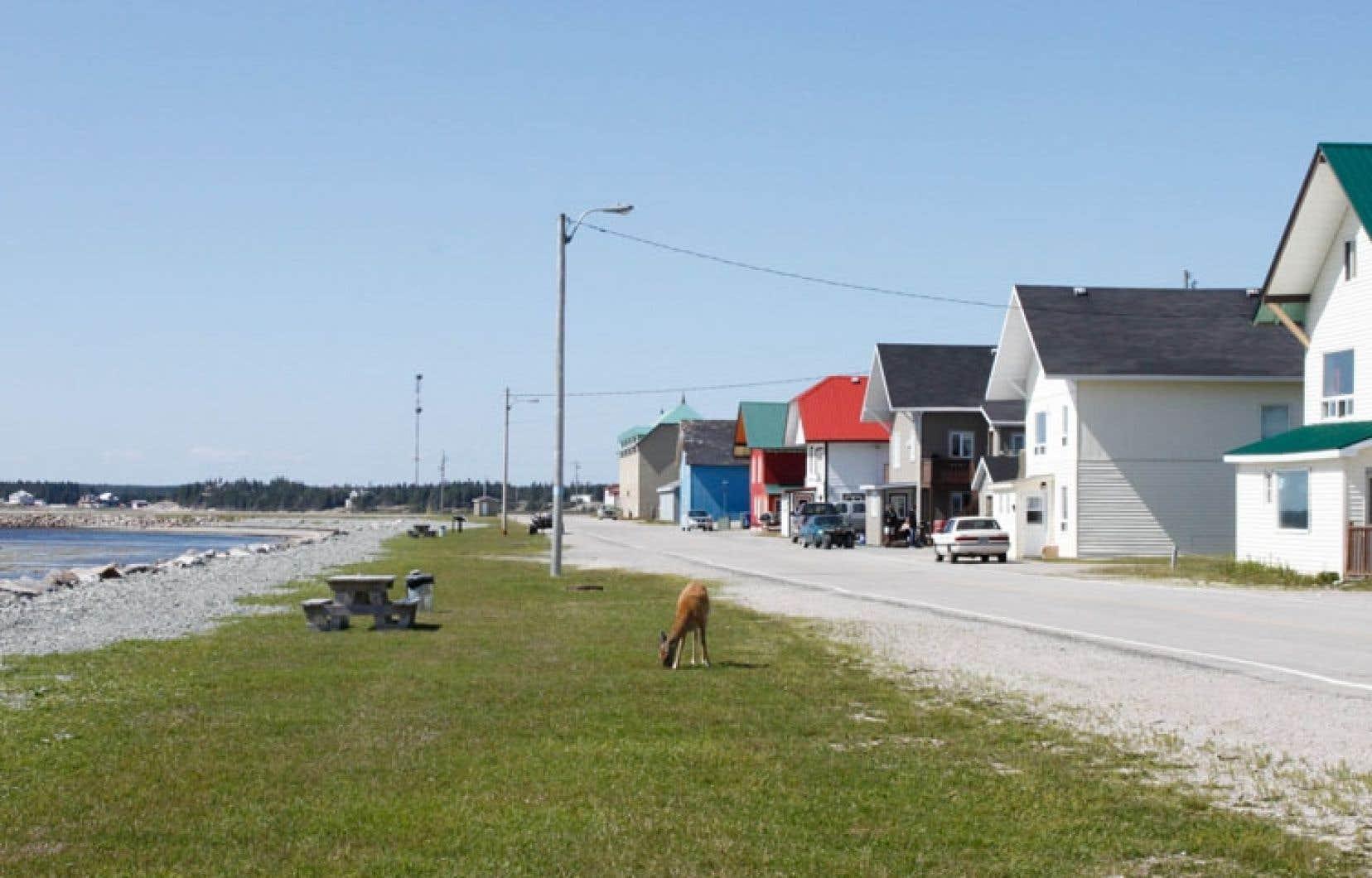 Port-Menier, sur l'île d'Anticosti. Pétrolia n'a pas acheté les droits d'exploration d'Hydro-Québec, mais lui a consenti des redevances.