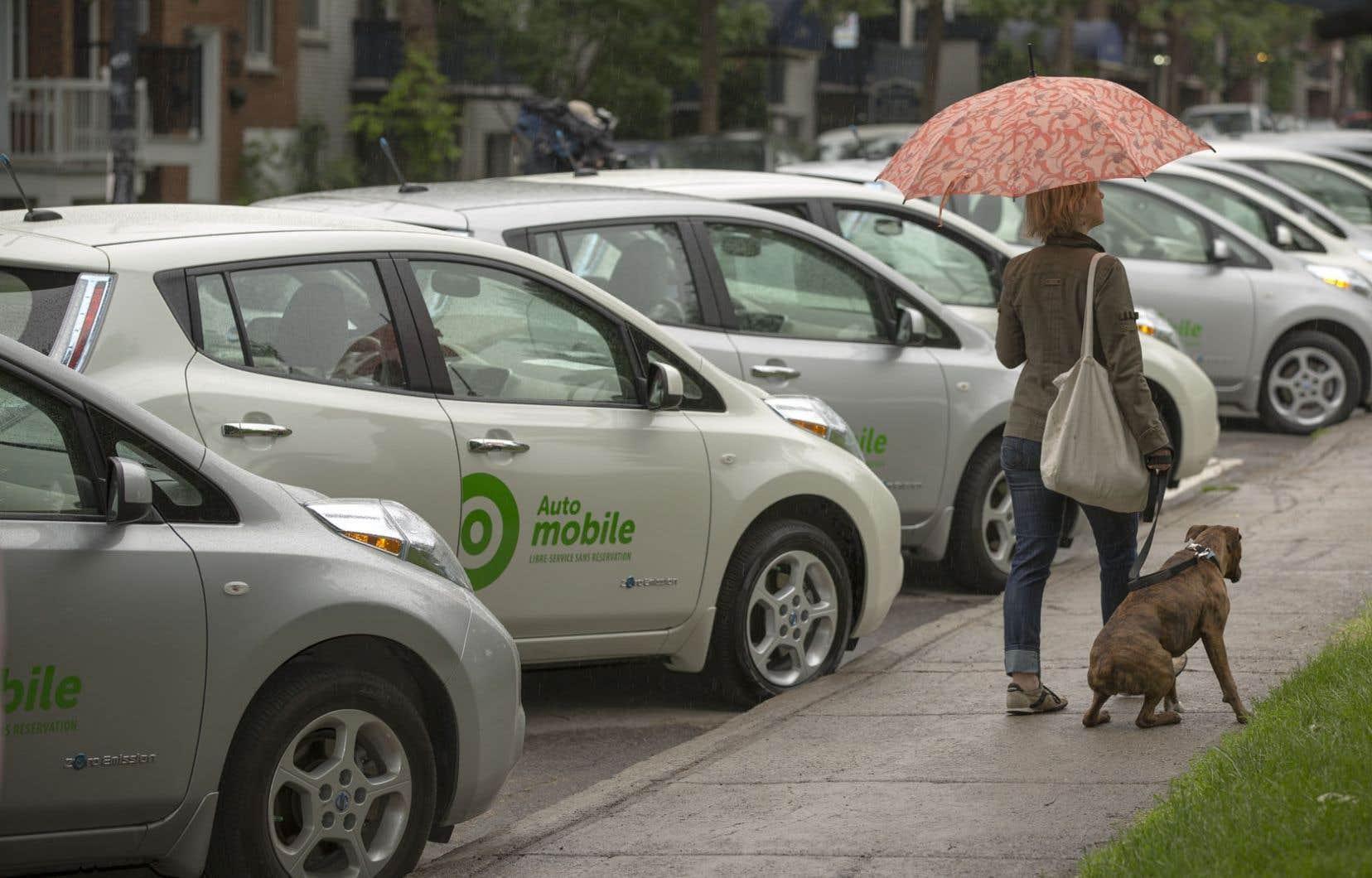Le Plateau-Mont-Royal est déjà l'hôte du projet pilote de voitures électriques en libre-service de Communauto.