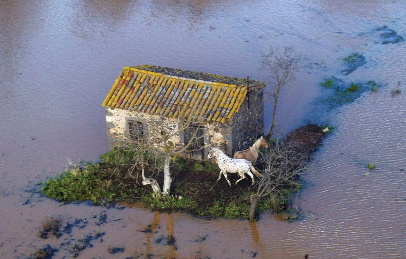 Il apparaît de plus en plus difficile de nier l'importance de l'activité humaine dans les bouleversements du climat mondial.