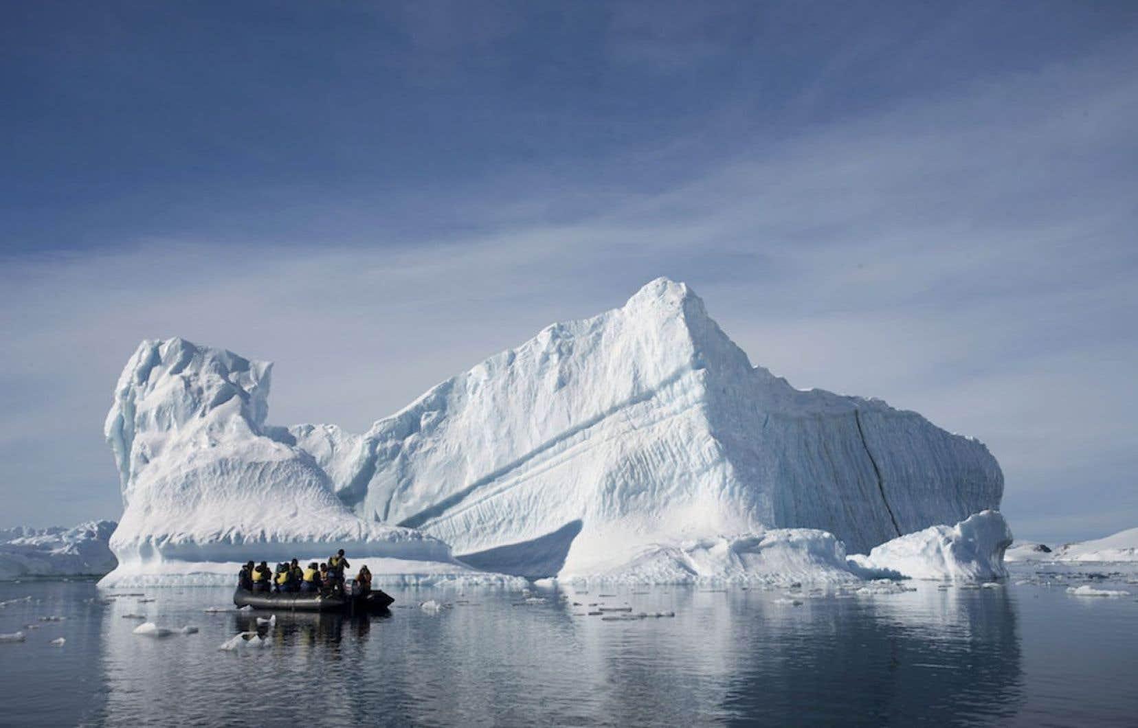 Les eaux de l'océan Austral autour de l'Antarctique abritent des écosystèmes exceptionnels, avec des milliers d'espèces animales.