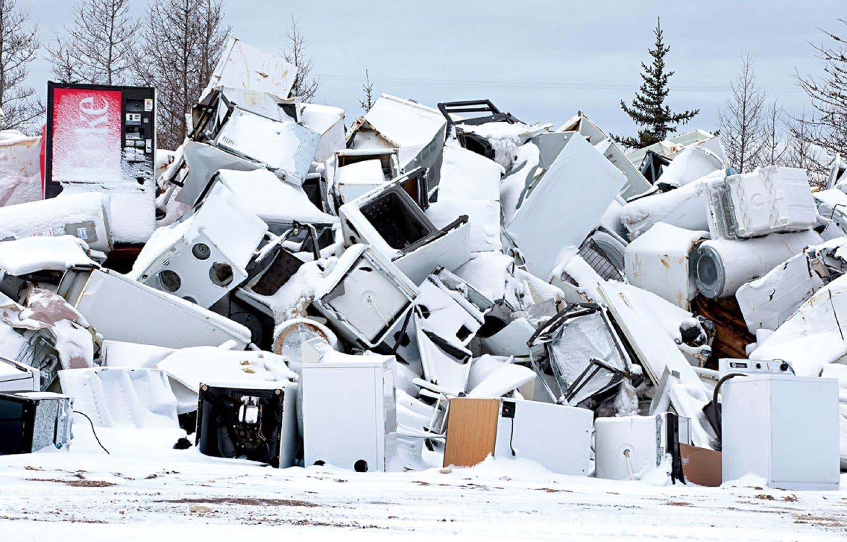 Le dépotoir est un habitat moins bucolique que la toundra, mais on peut y croiser des ours polaires attirés par les rebus ménagers des quelque 800 habitants de Churchill.