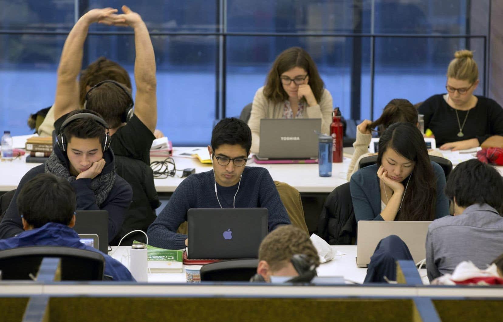 Dans les bibliothèques universitaires, les indicateurs de fréquentation et de prêts de livres sont en chute libre.