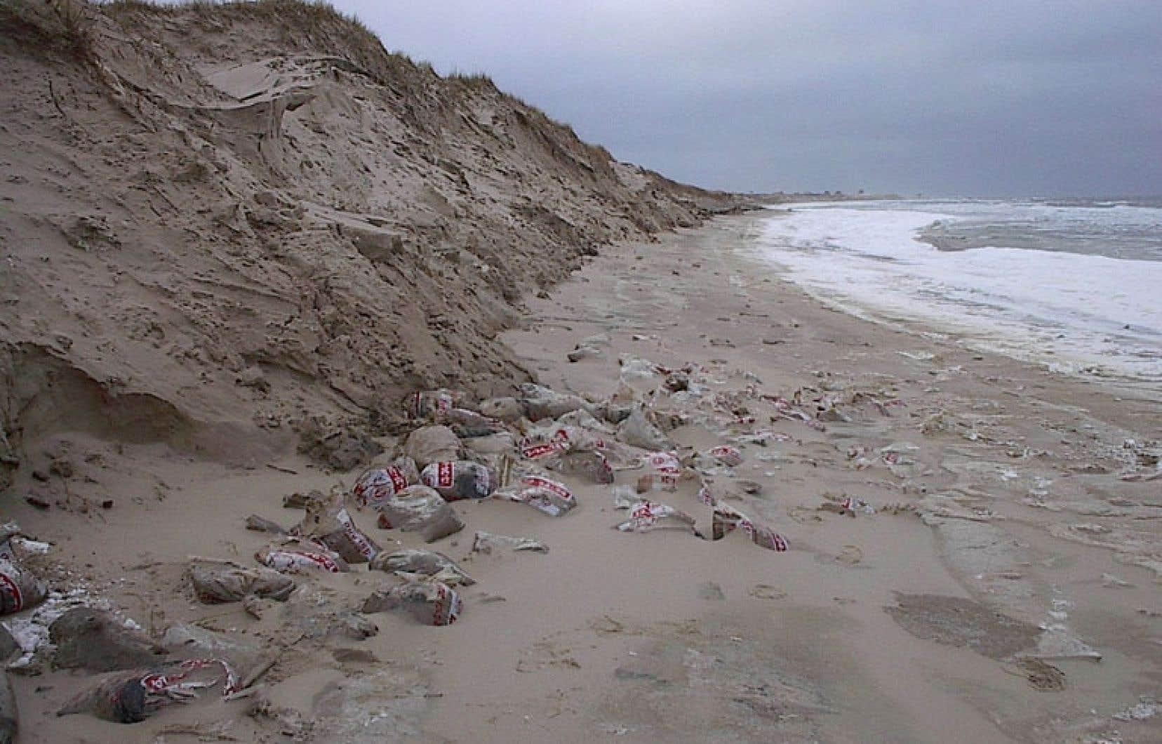 «Je croyais que les sacs avaient été sortis des îles et traités, mais quand j'ai su qu'on les avait enterrés sous les dunes et qu'on marchait probablement tous les jours dessus sur la plage sans même le savoir, ça m'a révolté. Je le suis encore, d'ailleurs.» — Roberto Chevarie, résidant des îles de la Madeleine
