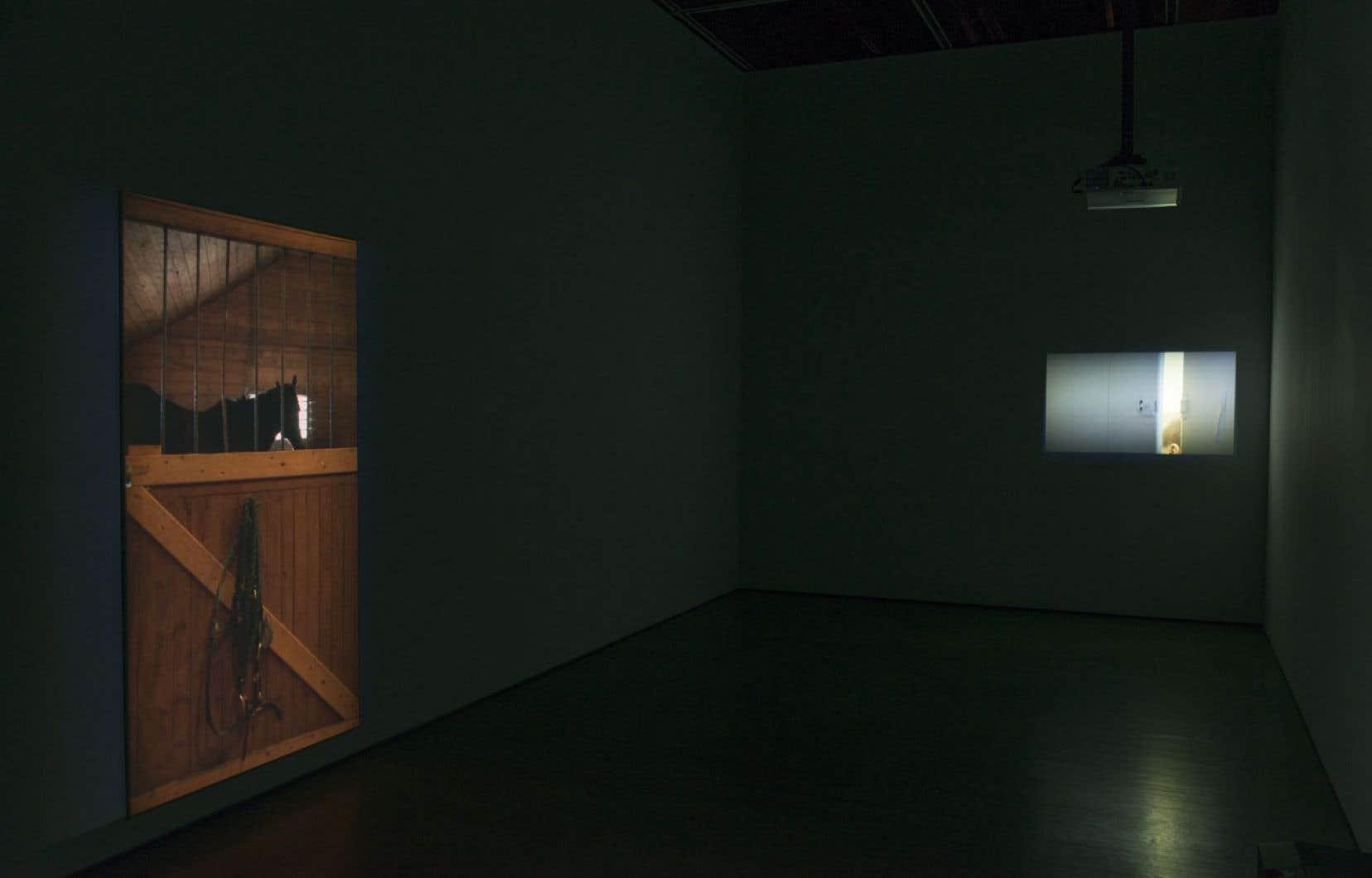 Vue d'installations d'Olivia Boudreau; de gauche à droite: Box, 2009, et Les petits, 2010.