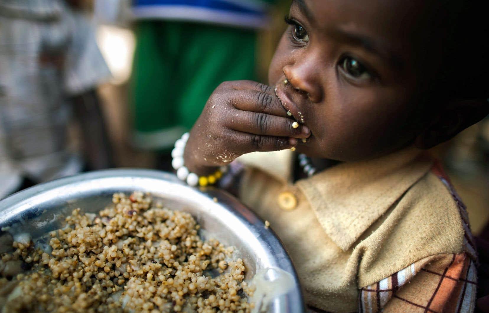 Un enfant dans un camp du Darfour, dans l'ouest du Soudan, au début du mois. La faim dans le monde n'a pratiquement pas reculé malgré toutes les stratégies mises en place.