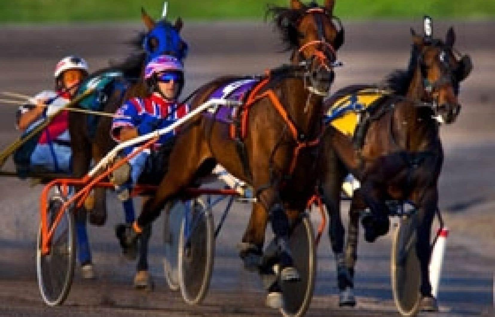 Le promoteur veut cesser de centrer les activités des hippodromes sur les hommes à chevaux.