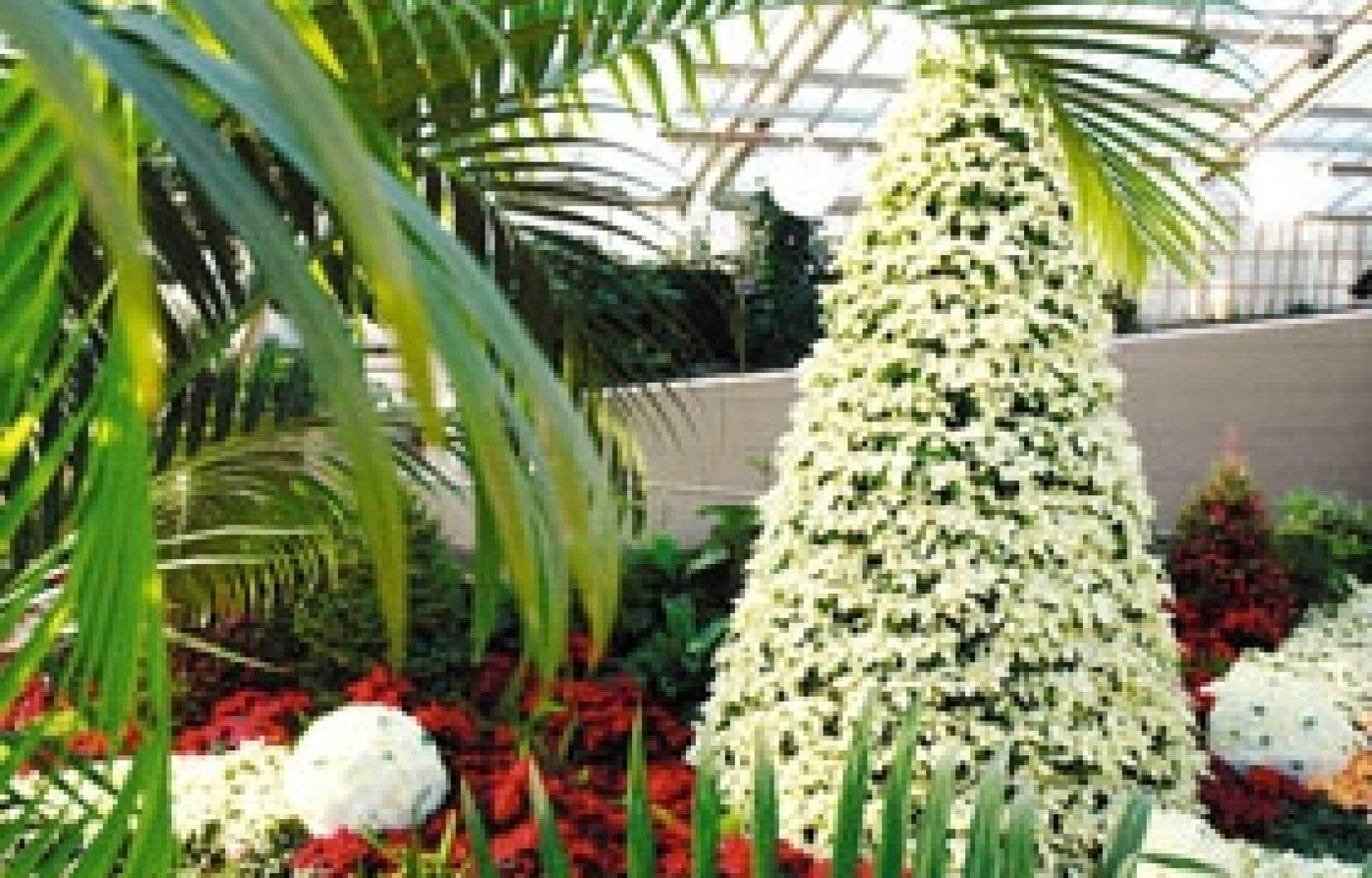 Noël au Jardin est une tradition depuis 1956.