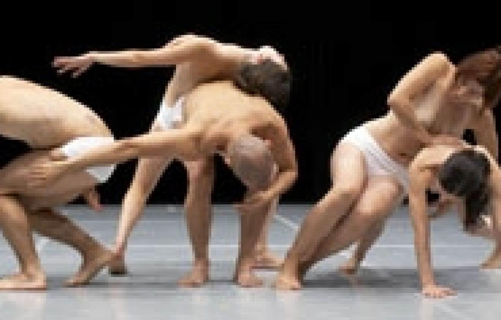 La danse souple et fluide d'Anatomies, du chorégraphe et danseur José Nava.