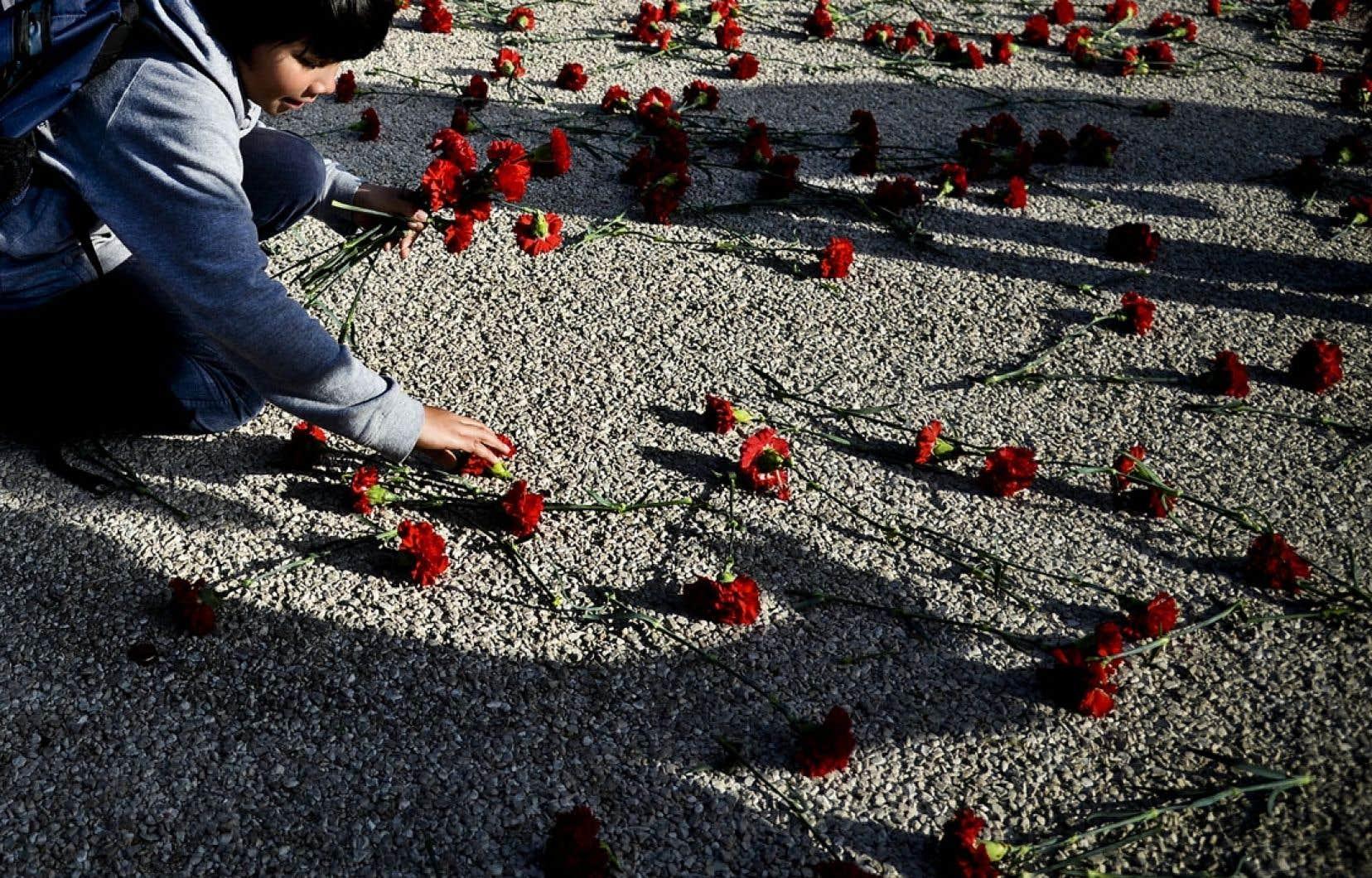 Un jeune Portugais récupère des œillets sur le sol à Lisbonne, vendredi.
