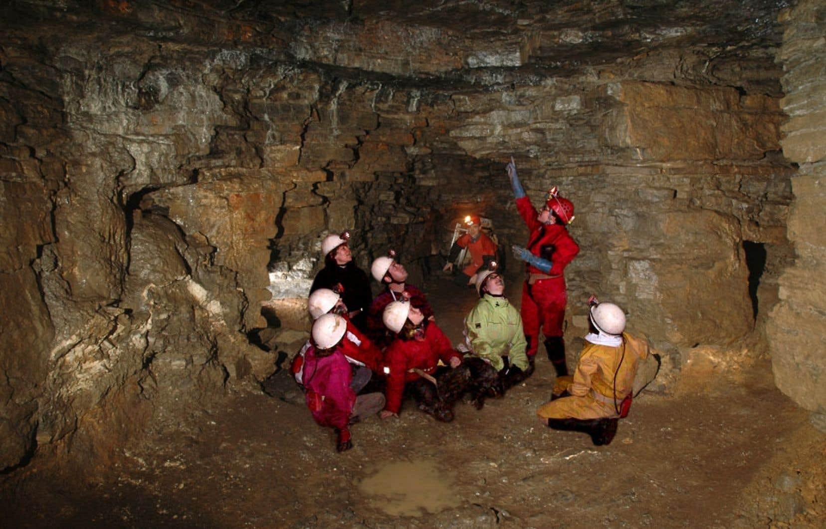 Surtout fréquentée par les groupes scolaires et les participants à des camps de jour, la caverne de Saint-Léonard est toutefois ouverte à tous. Le format miniature du site fait en sorte que les enfants peuvent, dès l'âge de six ans, circuler aisément dans les différents niveaux.