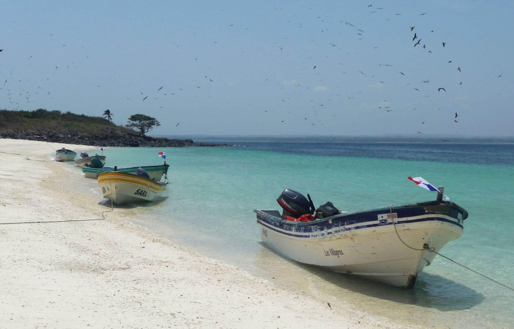 C'est dans ces embarcations, qui mouillent ici à la Playa El Cirial, que sont transportés les touristes.