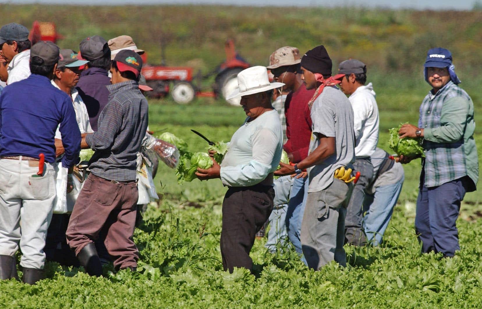 L'accord entre le Canada et le Québec sur les travailleurs étrangers temporaires prévoit des discussions, mais sur de simples détails techniques.