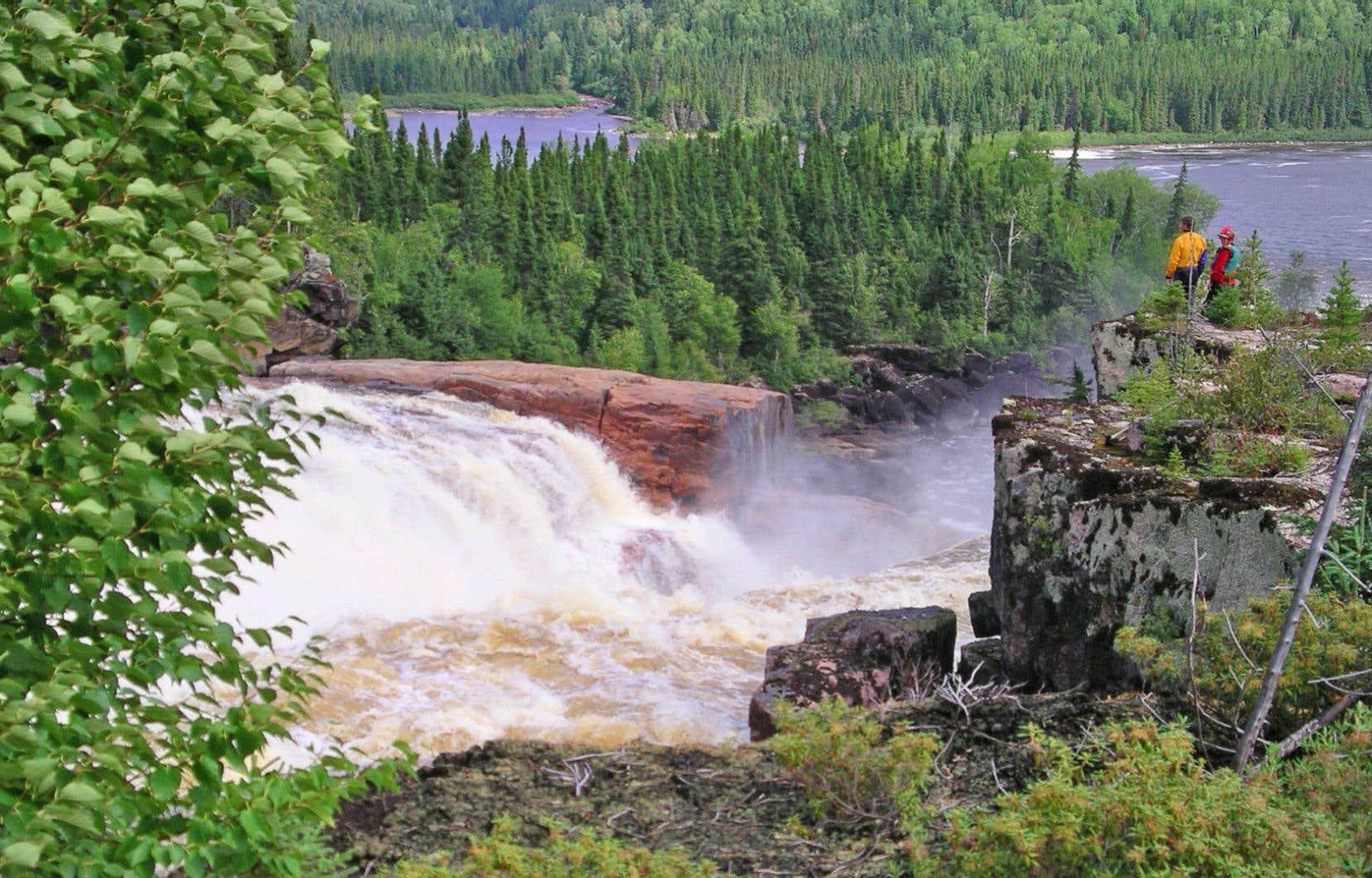 La vallée de la rivière Broadback, située sur le territoire de la baie James, d'une superficie de 13 000 km2, compte notamment une des dernières grandes forêts vierges du Québec.