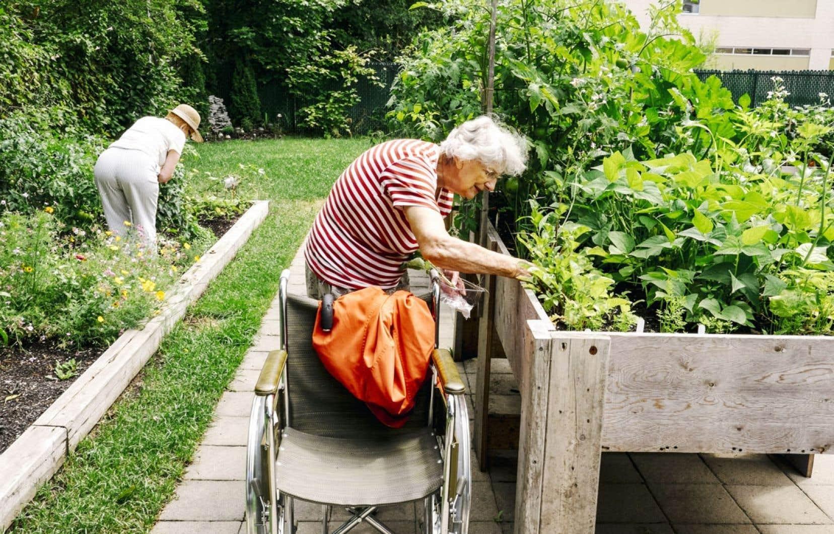 Les jardins de la résidence Saint-Paul-Apôtre, à Limoilou, font le bonheur de Huguette Soucy et de Colette Labranche.