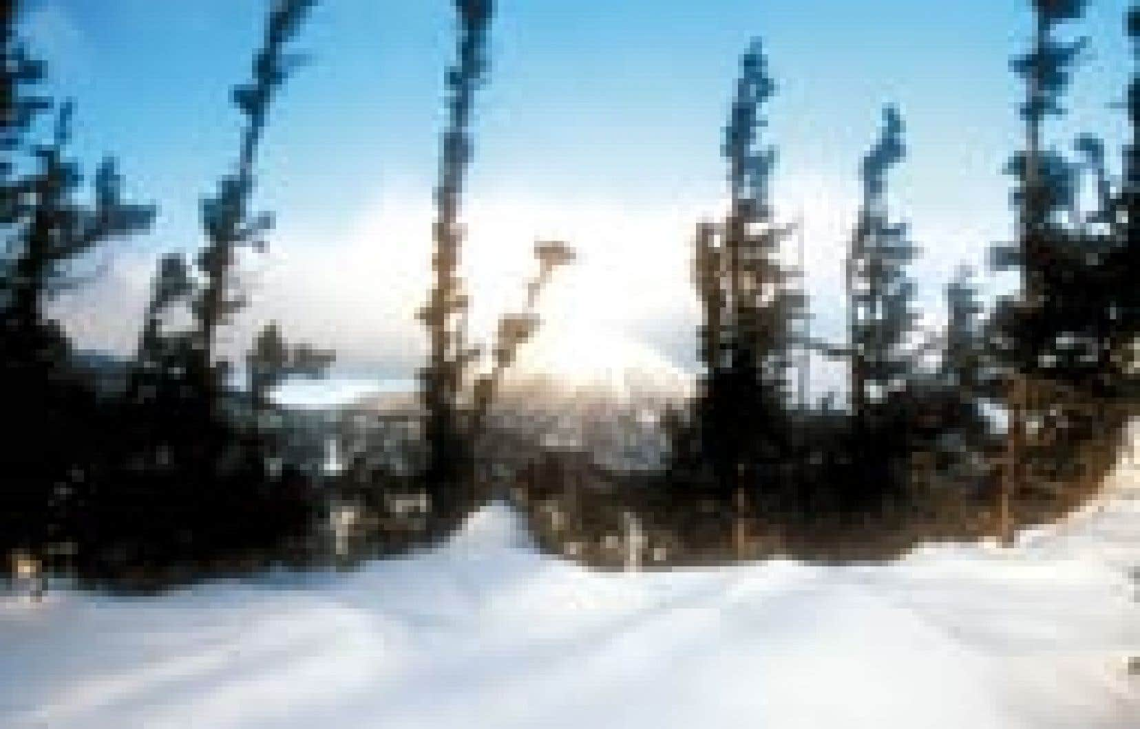 Le mont Coleman, vu du sommet du «750», un des monts accessibles depuis l'Auberge de montagne des Chic-Chocs. — Gary Lawrence