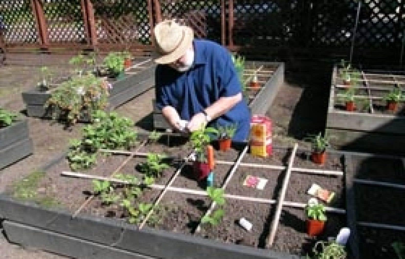 Fabriquer Potager Carré En Bois carrément facile, le potager en carrés | le devoir