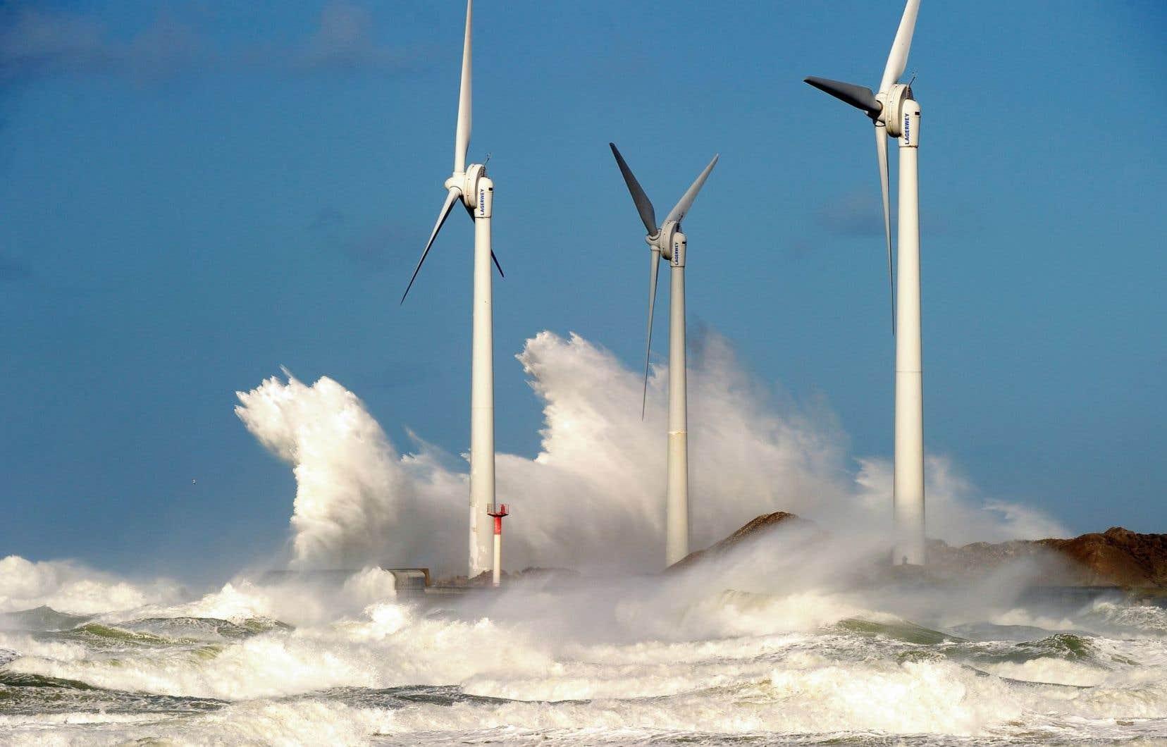 Les sources d'énergie renouvelables comptent pour la moitié des nouvelles capacités de production électrique construites durant les quatre dernières années.