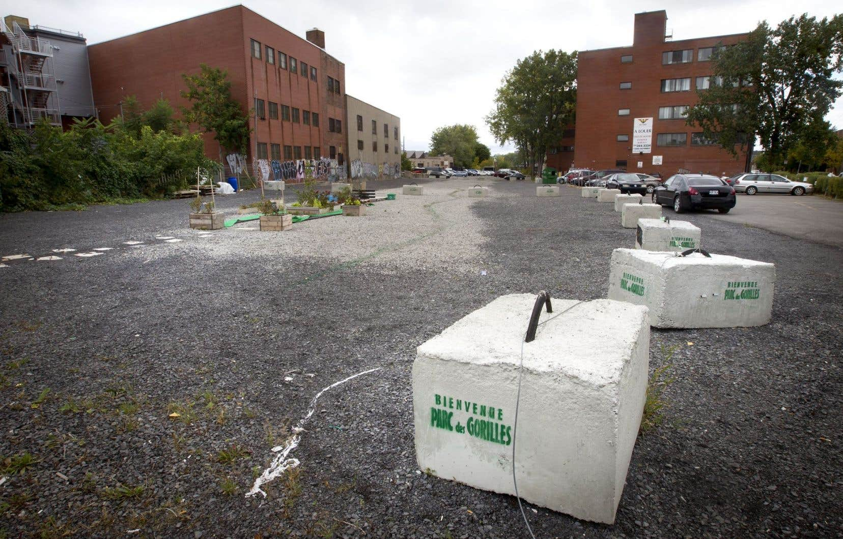 Les Ami(e)s du parc des Gorilles ont obtenu l'assurance que la Ville de Montréal et l'arrondissement travailleraient de pair afin d'acquérir et d'aménager le terrain, qui se trouve au coin des rues Beaubien et Saint-Urbain.