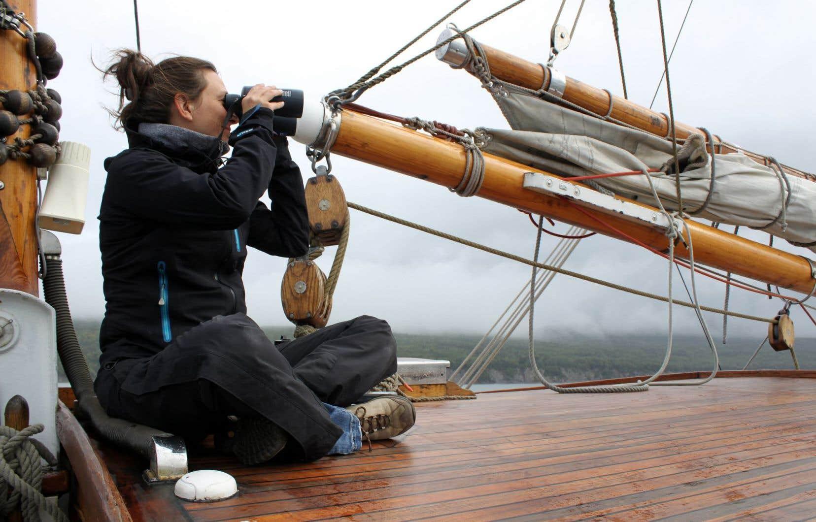 Sonia Giroux scrute l'horizon à la recherche de baleines.