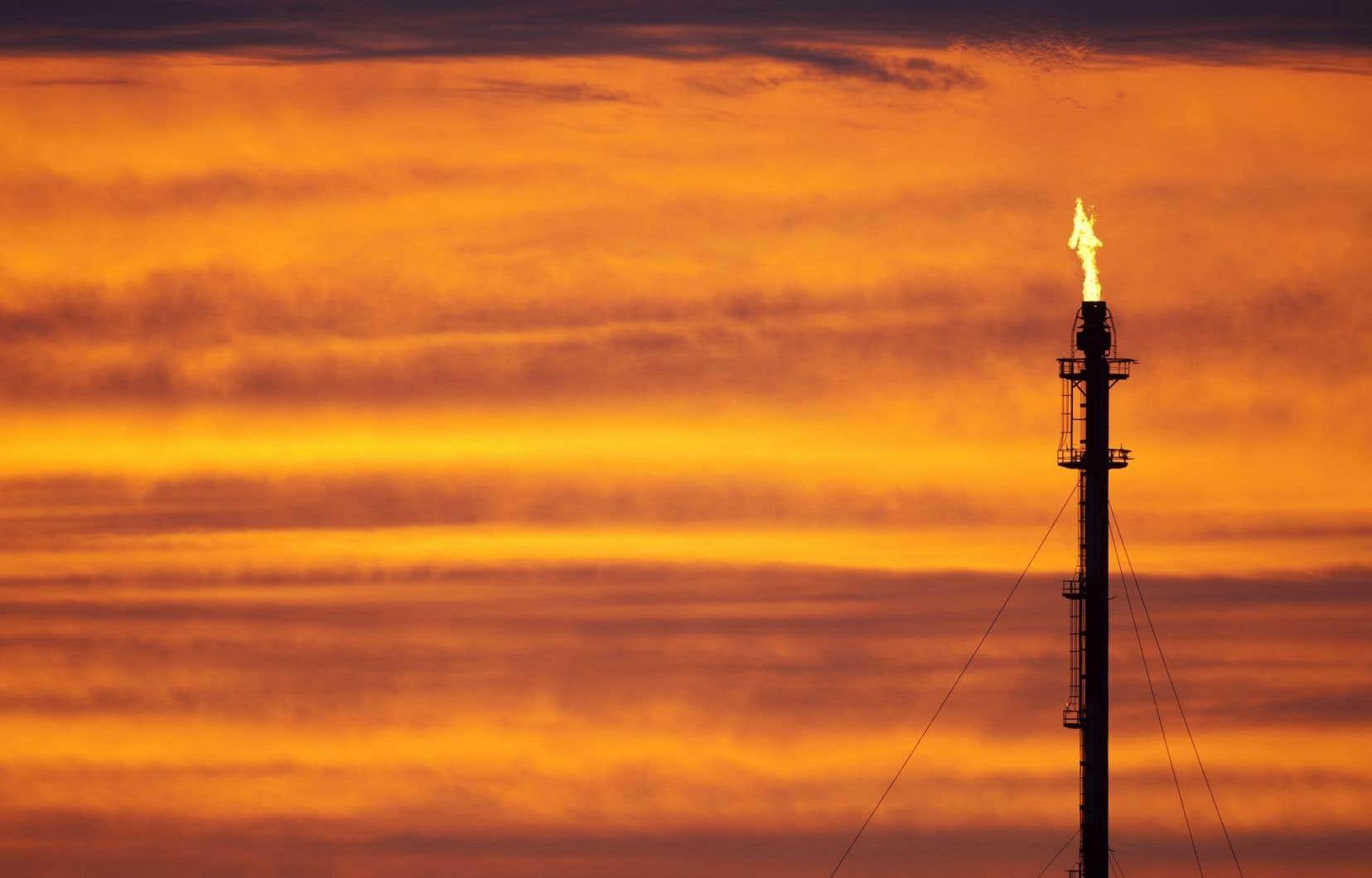 La torche d'une raffinerie de pétrole.