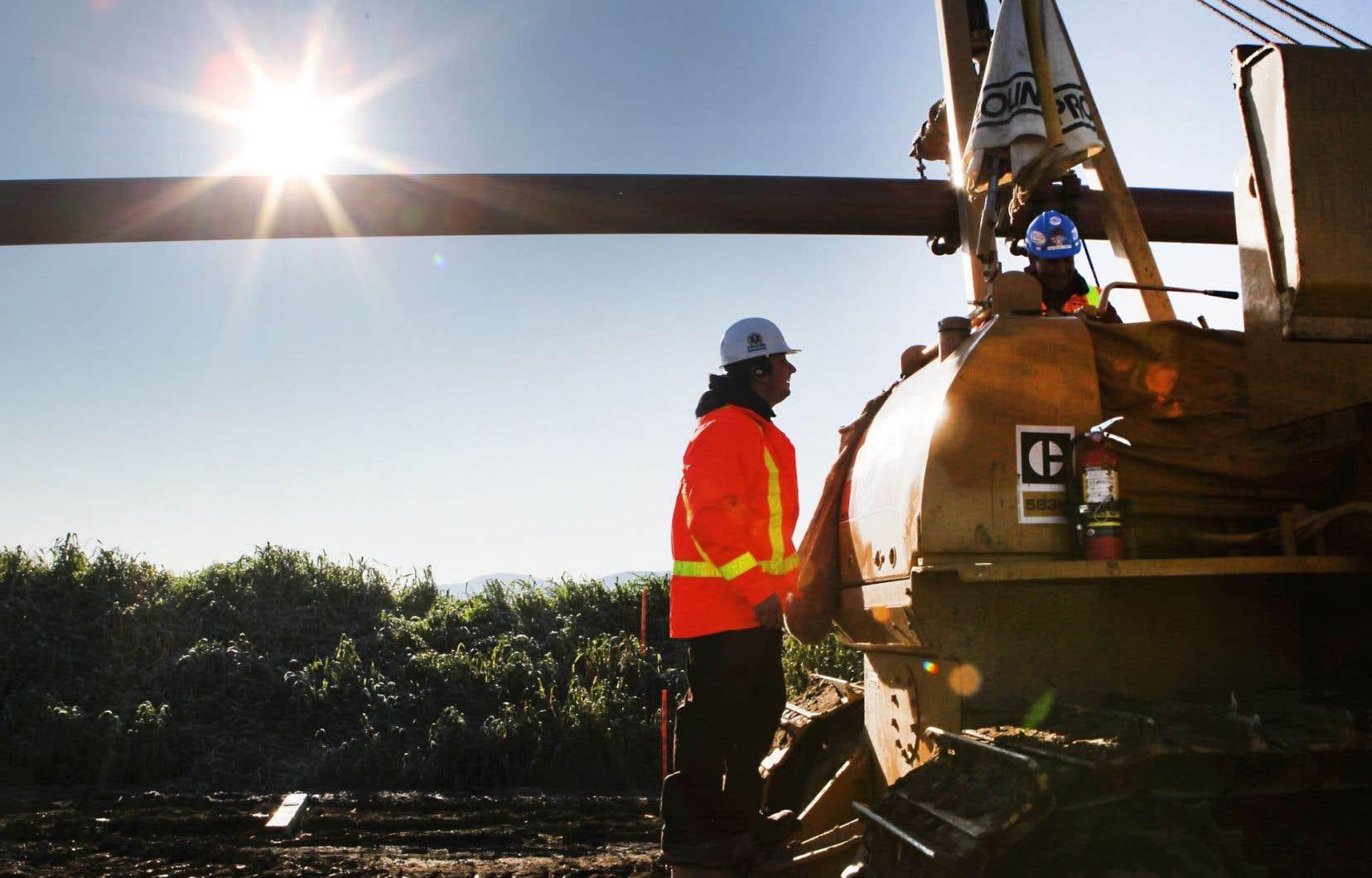 L'emploi a augmenté de 20 000 au Québec en novembre.