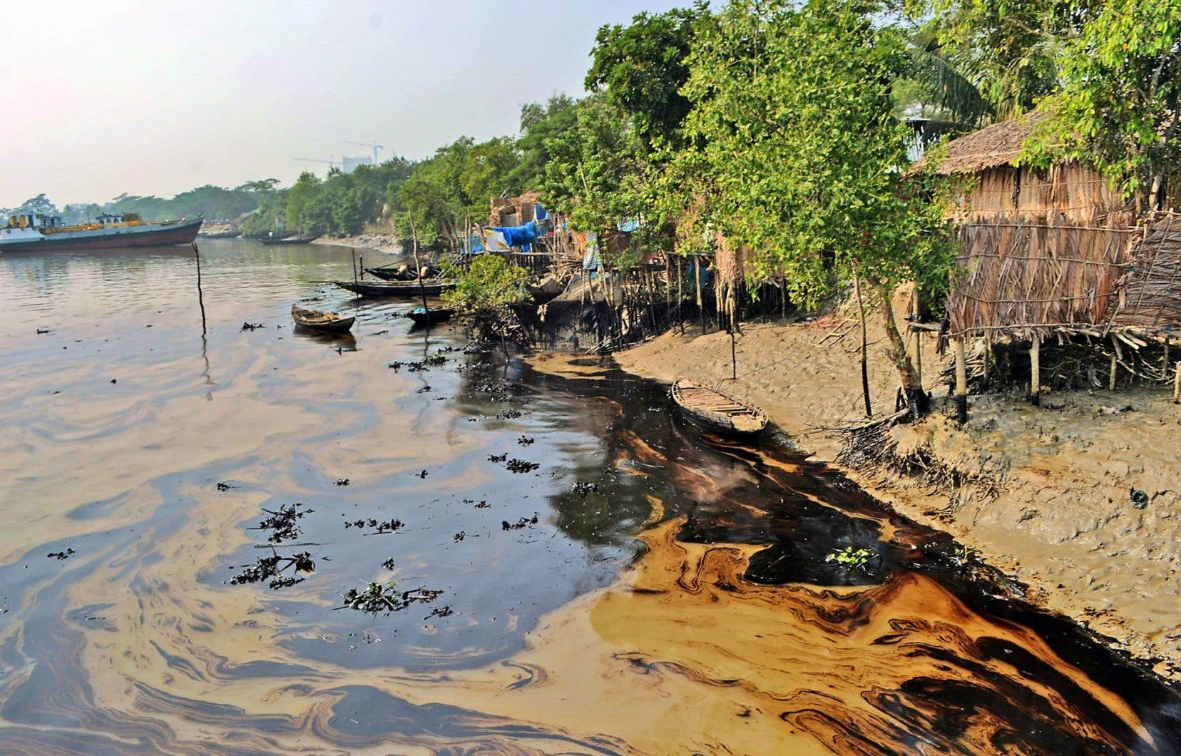 350000 litres de pétrole se sont déversés dans la réserve des Sundarbans, classée à l'UNESCO.