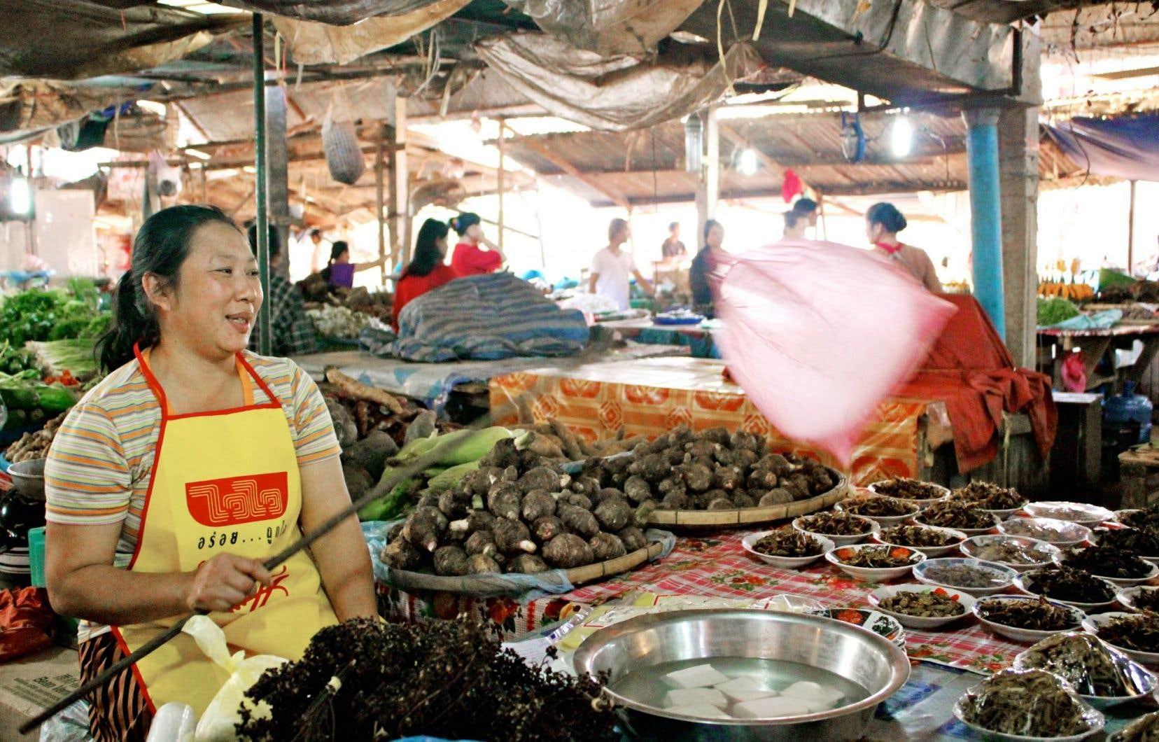 Au marché Dong Makkhay, situé à 15 kilomètres au nord de Vientiane, au Laos, on trouve un grand choix d'insectes comestibles.