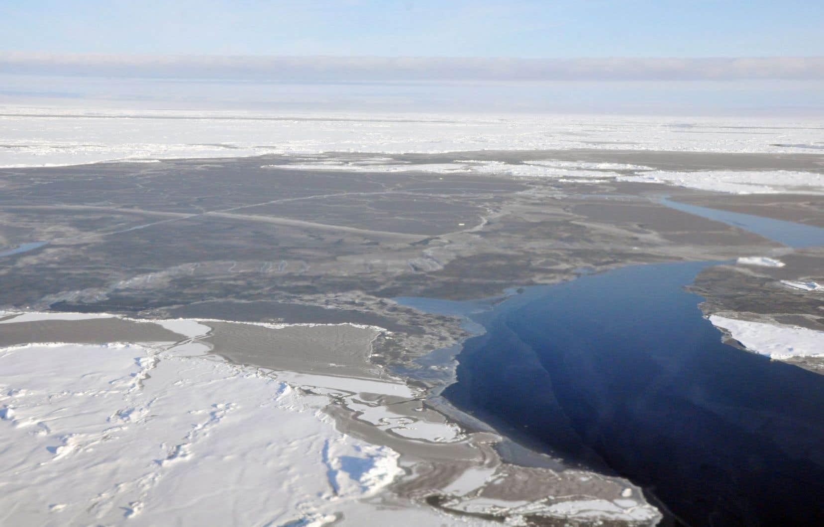 Le mois dernier, la glace marine de l'Arctique couvrait 630000 kilomètres carrés de moins que la moyenne des 30 dernières années.