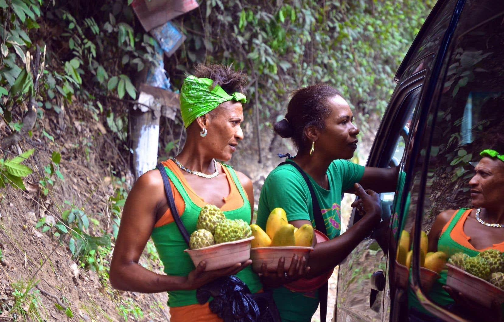 Il est courant de voir des vendeurs de fruits exotiques au bord des routes.