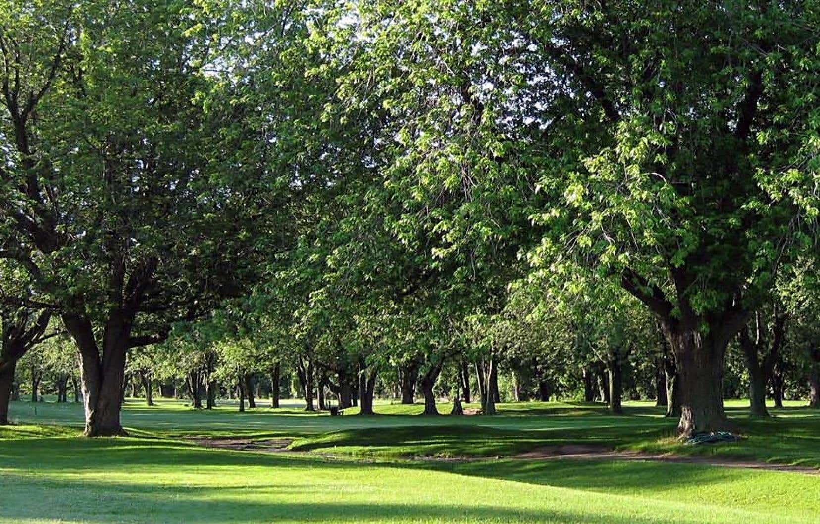 Le terrain du golf Meadowbrook chevauche l'arrondissement de Lachine et la ville de Côte-Saint-Luc.