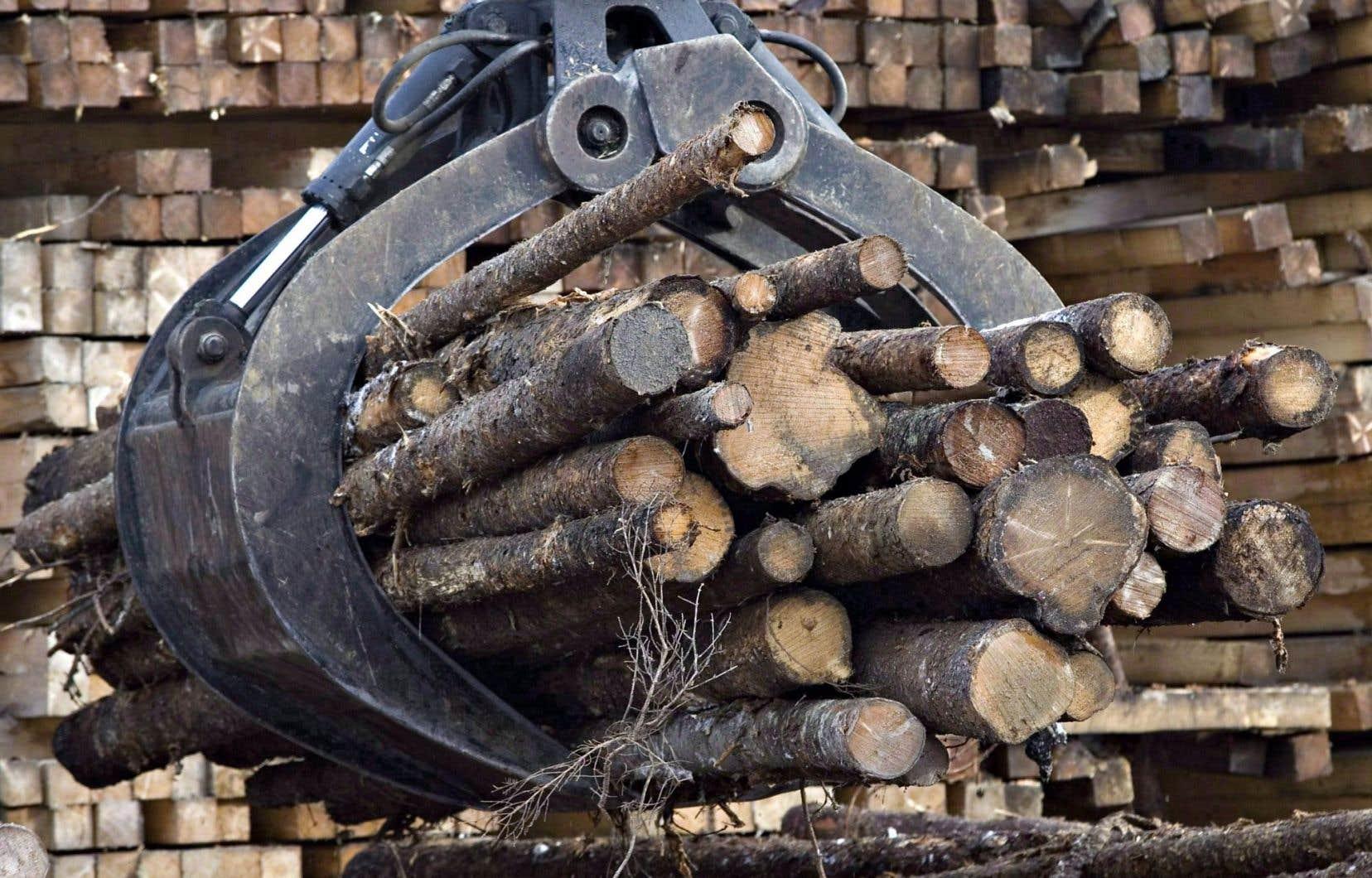 Les investissements annoncés lundi sont axés notamment sur l'entretien des zones en exploitation, la planification forestière, l'exécution, le suivi et le contrôle des interventions en forêt.
