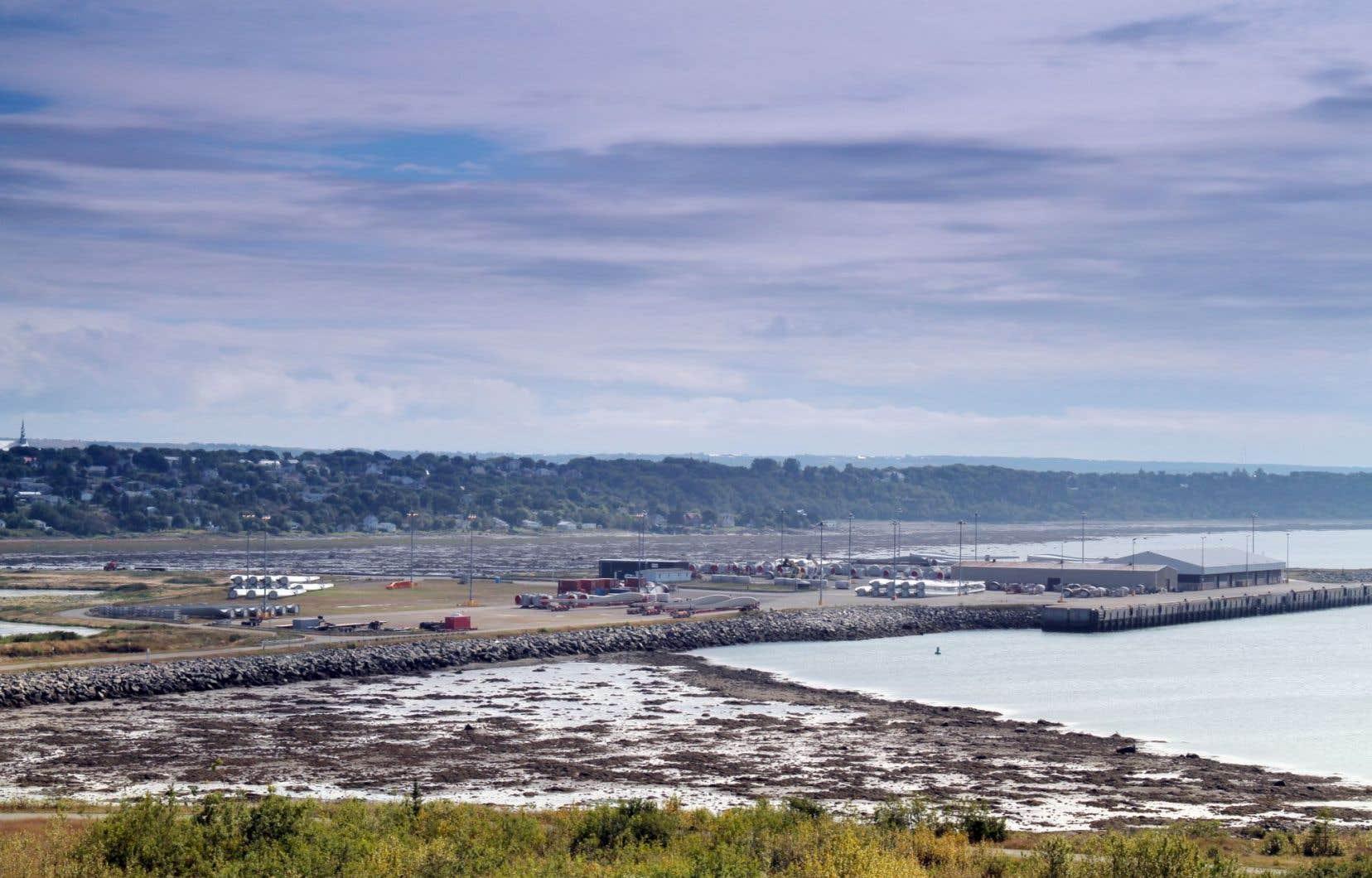L'idée de construire un port en plein coeur de la pouponnière des bélugas du Saint-Laurent avait été vivement contestée depuis plusieurs mois.