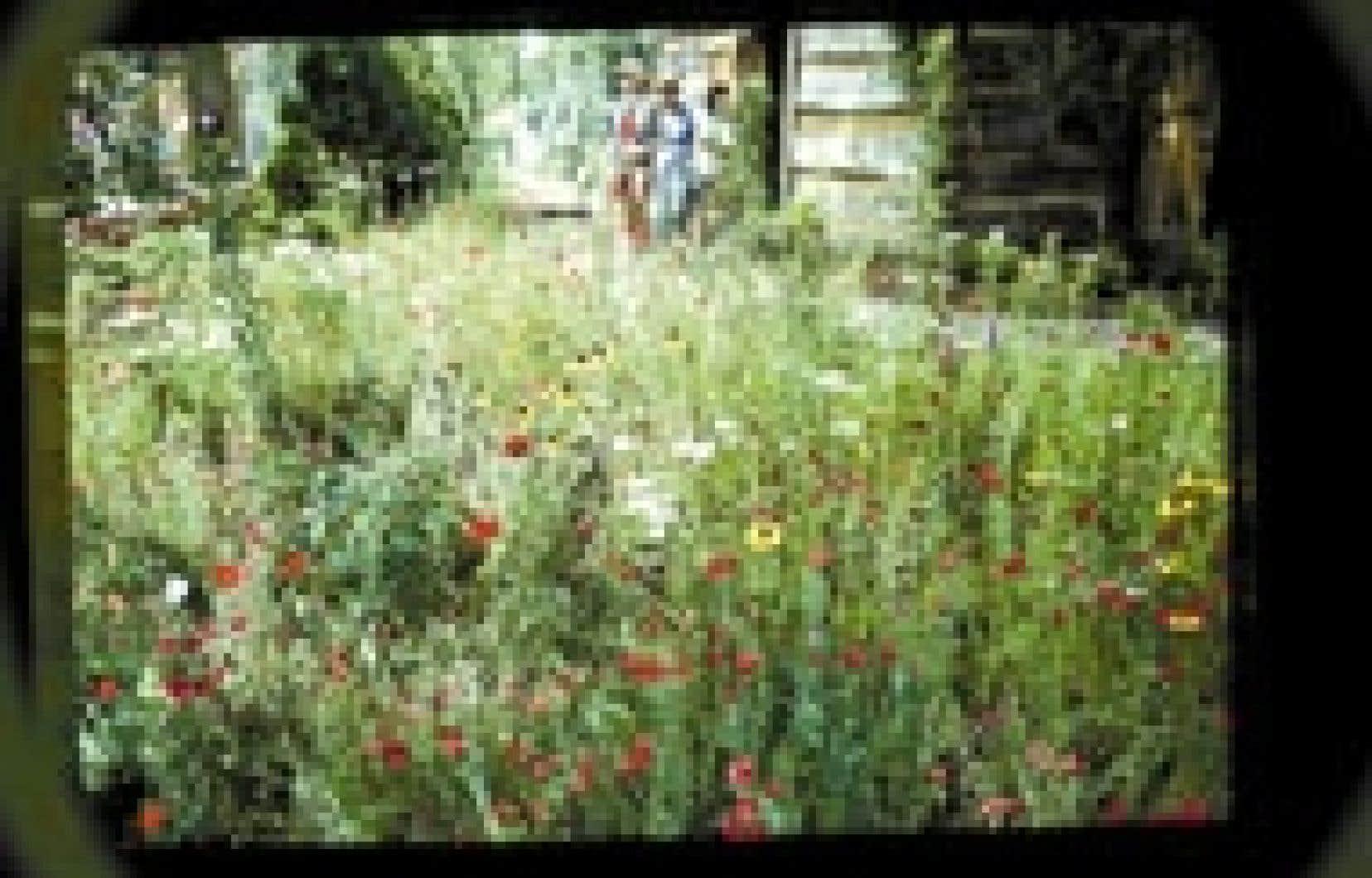 Un mélange à base de fleurs annuelles, pratique pour les petits espaces.