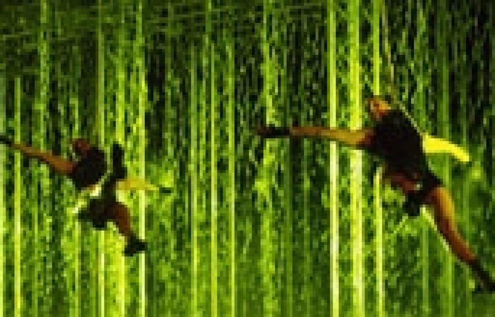 Les quatorze artistes de la troupe italienne de danse acrobatique Materiali Resistenti Dance Factory voltigent pendant près d'une heure autour d'une cascade de dix mètres de largeur et de quatre mètres de hauteur.