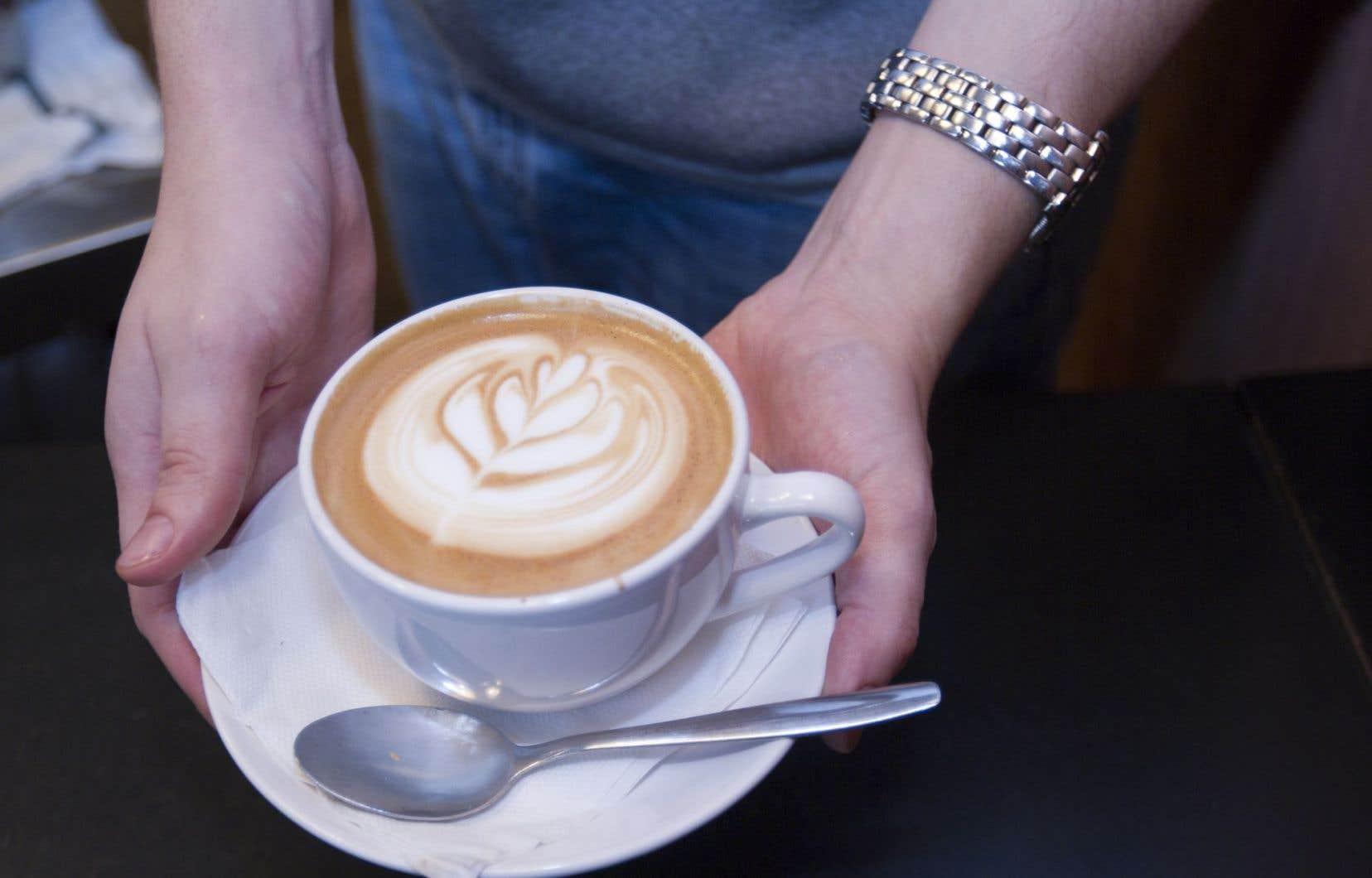 Si l'énigme de la brume de café s'est un peu éclaircie, elle continue de résister à la science.