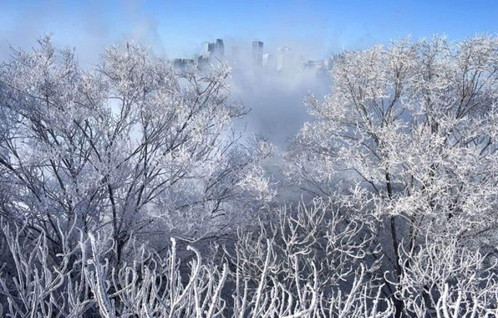 L'air arctique qui a soufflé sur le Québec en février a abaissé les températures entre cinq et neuf degrés sous les normales habituelles.<br />