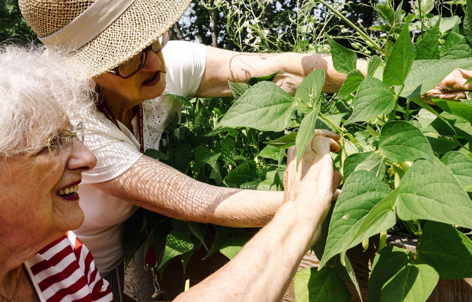 Selon une étude de 2010, les jardins communautaires seraient excellents pour lutter contre l'exclusion et encourager les contacts entre des personnes issues de milieux différents.