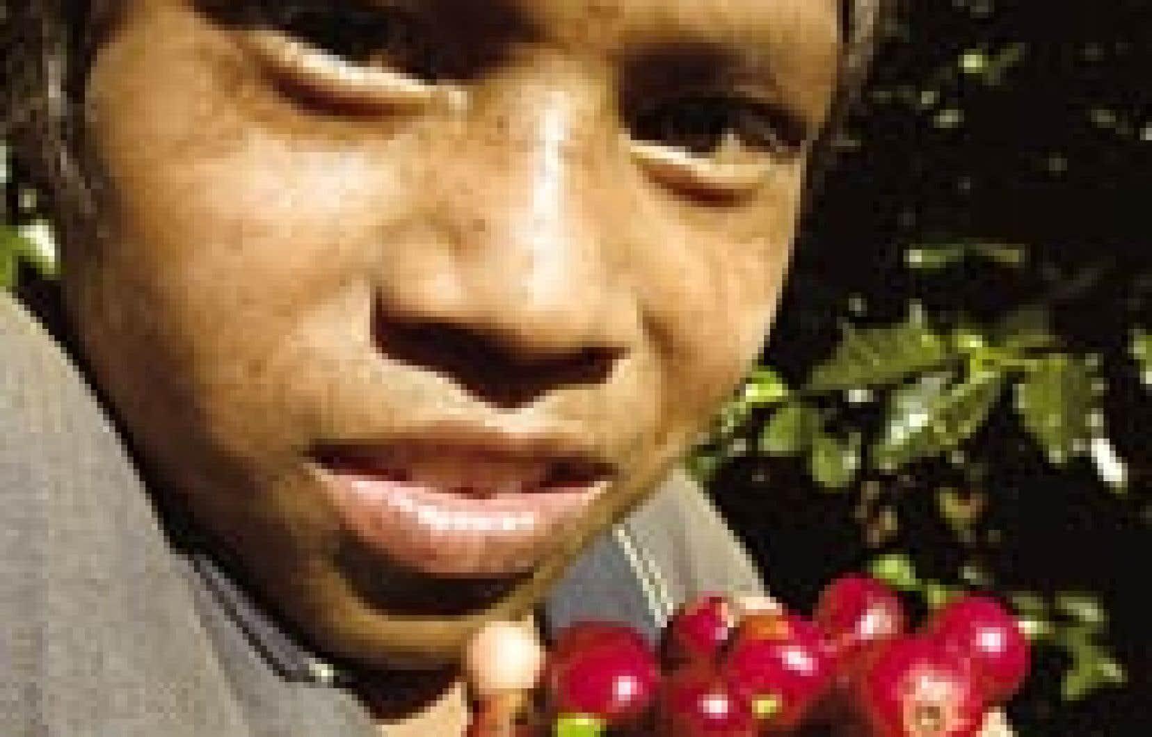 Quelque 350 millions d'enfants travaillent à travers le monde, selon l'Organisation internationale du travail (OIT). Près de 250 millions sont astreints à des tâches occupant la totalité ou la majeure partie du temps qu'ils pourraient passer e