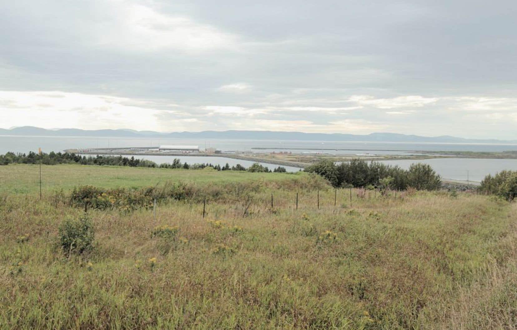 La compagnie TransCanada confirme qu'elle ne construira pas de terminal maritime ou de réservoirs connexes à Cacouna, au Québec.