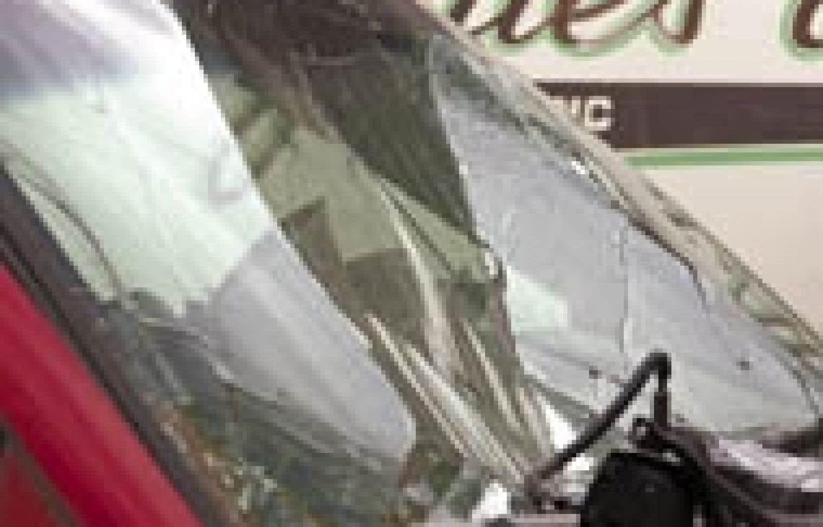 En 2002, les automobilistes québécois ont réclamé 185 648 bris de vitre à leur compagnie d'assurances, soit 31,2 % des demandes concernant les voitures.