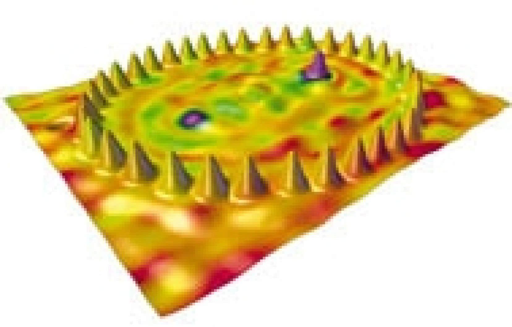 Cette image électronique représenteune couronne d'atomes de cobalt déposée sur une plaque de cuivre. L'assemblage a été réalisé par des spécialistes des nanotechnologies, cette nouvelle science qui permet de manipuler de simples atomes et